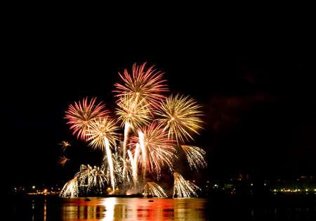 salvoes: Celebratory  fine firework in night sky Stock Photo