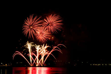 salvoes: Celebratory fine firework in night sky