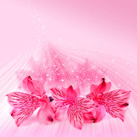 Pink floral fantasy card for Valentines day photo