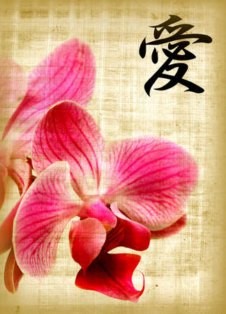 Beautiful pink orchid and hieroglyph love on old papyrus photo