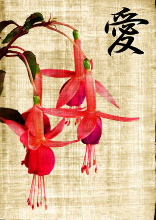 Beautiful pink  flower and hieroglyph love on old papyrus photo