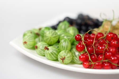 Sweet berries red currant and black-currant and gooseberries for dessert and vegetarian diet Stock Photo - 7052705