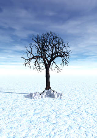 3 d graphics winter fantasy landscape with lonely tree photo