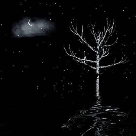 Noche paisaje 3d con cielos nublados y árboles  Foto de archivo - 7984425