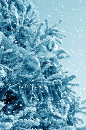 christmas embellishments: Christmas fir-tree on the area of city decorated by a holiday