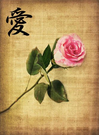 Pink rose on old brown paper background and hieroglyph love photo
