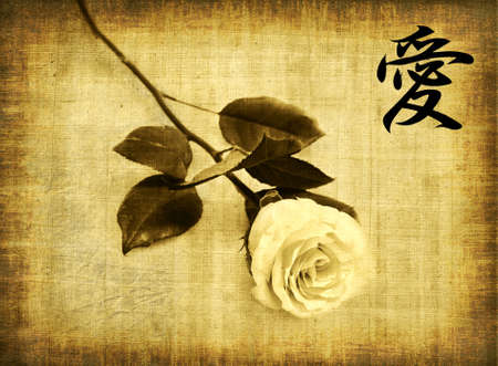 Rose on old brown paper background and hieroglyph love photo