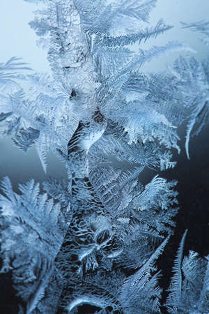 frosted glass: Frosty original  pattern at a winter window glass, natural texture  Stock Photo