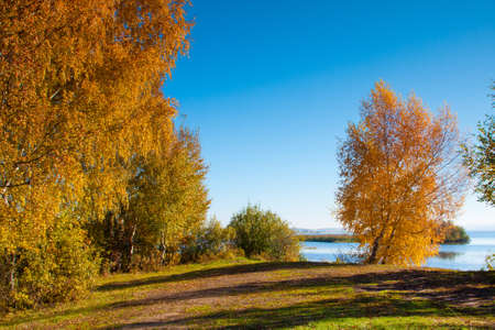 Beautiful nature, autumn. Wild scenery. Small River Stock Photo - 11049144