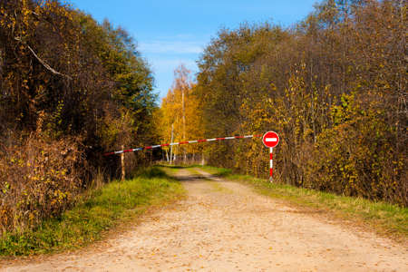 road autumnal: Yellow trees and road in fall nature, Autumnal landscape Stock Photo