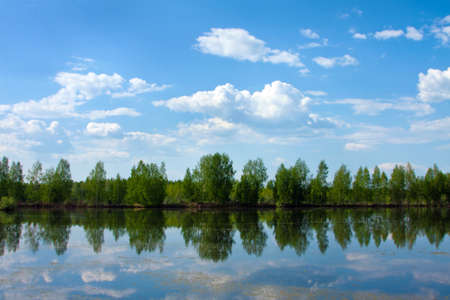 Beautiful nature, summer. Scenery with river and forest photo