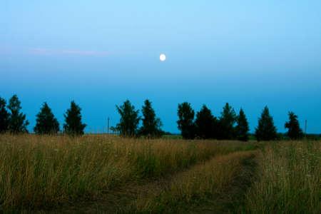lea:  Night and lea, moon