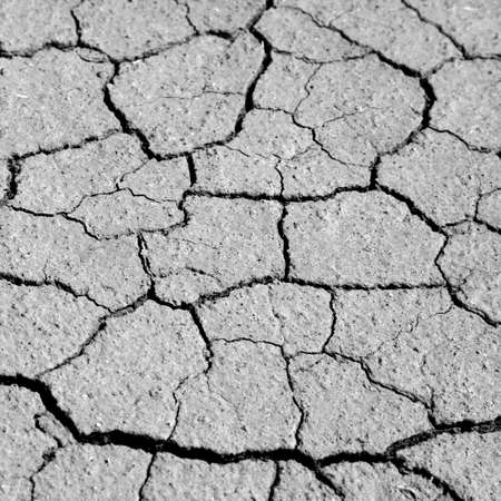 Droughty ground, cracked natural textural background photo