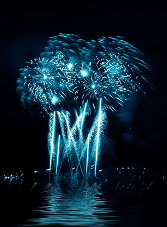 firework in a night sky Stock Photo - 11218781