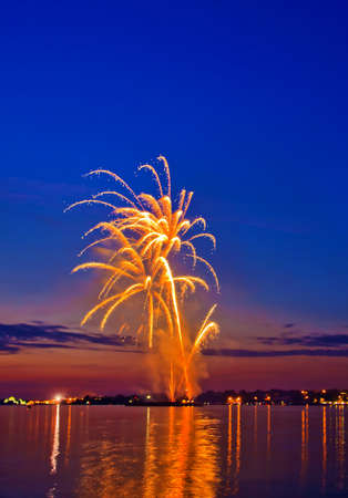 salvoes:  �elebratory bright firework in a night sky