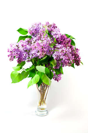 Blossom of spring flowers lilac in glass on white background photo