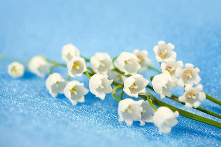 Spring flowers lily of the valley on blue silk background Stock Photo