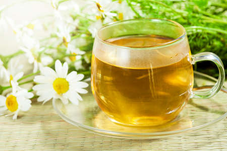 oxeye: Flowers of camomile  ox-eye daisy  and green tea in sunny light