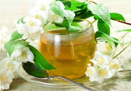 Flowers of jasmine and green tea in sunny light photo