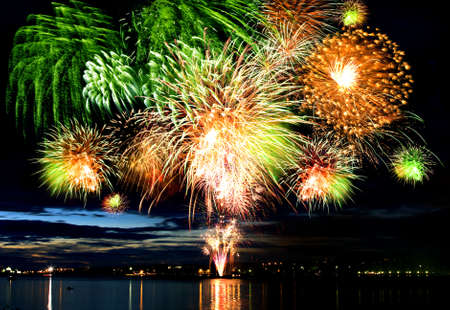 Celebratory bright firework in a night sky Stock Photo - 12894224