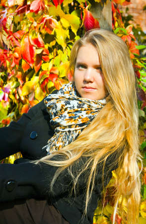 Portrait of the beautiful girl in autumnal  season photo