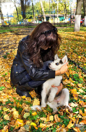 Dog siberian husky   puppy  and young woman on green grass in a park photo
