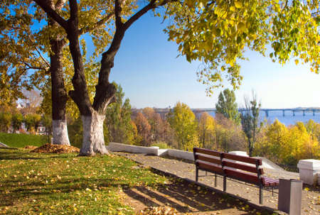 Beautiful nature, autumnal season in city. Golden Autumn in a park photo