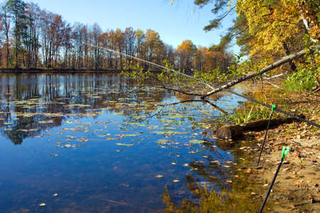 Beautiful nature, autumn. Wild scenery with river photo