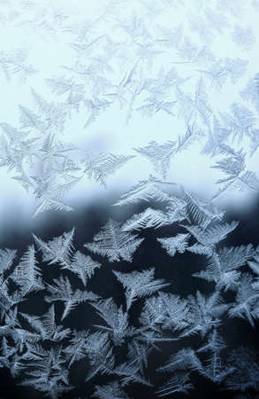 Frosty natural pattern at a winter window glass photo