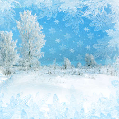 Christmas scenery with snowflakes and snowy trees photo