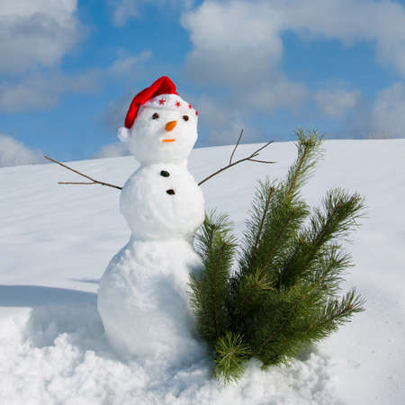 Snow man in santa cap on nature in sunny cold day Stock Photo - 16690629