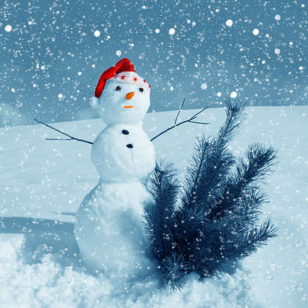 Snow man in santa cap on nature in sunny cold day Stock Photo - 16690638