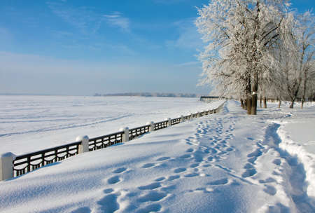 Winter landscape in city, park and alley, Russia photo