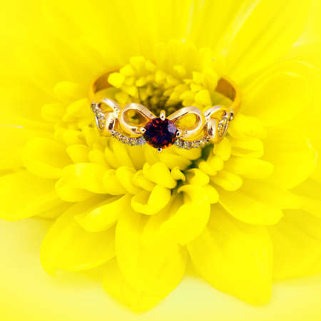 jewelle: Golden jewelry accessories  with brilliants and ruby on yellow flower Stock Photo