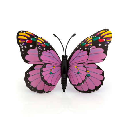 herbaceous: Beautiful colorful butterfly on a white background