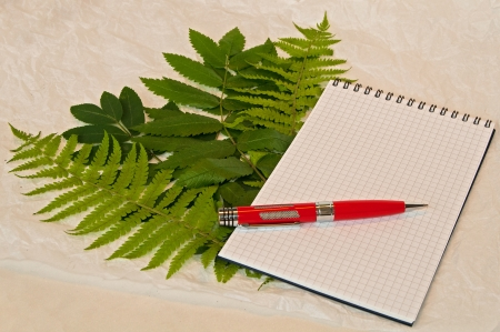 Squared notebook with red pen on it on the green leaves and crumpled paper background photo