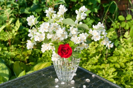 jasmin and rose bouquet photo