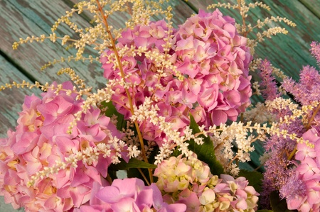 pink hydrangea and astilbe close up photo