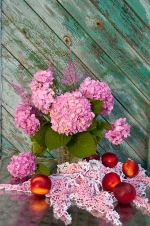 still life hydrangea and nectarines photo