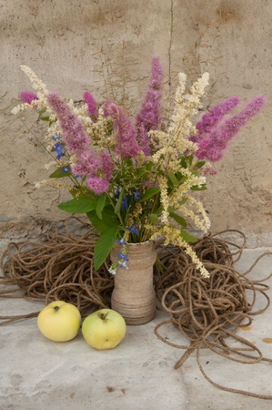 still life bouquet of astilbe with rope and apples photo