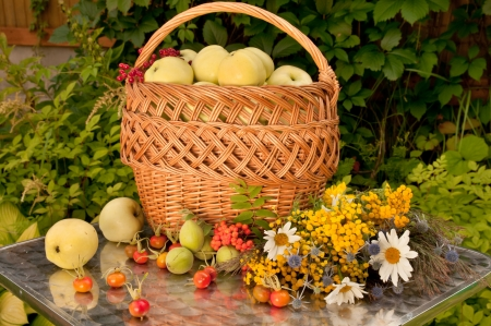 basket of white transparent apples with wild flowers bouquet