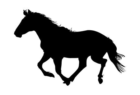 black horse: silueta del caballo ilustración vectorial negro