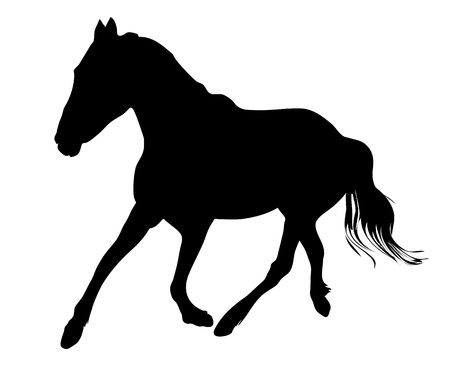 silhouette of the black horse vector illustration Vector