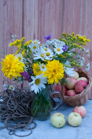 chamomiles and cone flowers bouquet still life with apples Stock Photo - 21616264