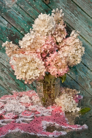 wet still life with pink hydrangea bouquet photo