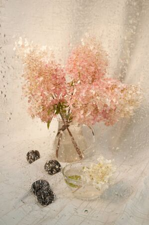 wet still life with pink hydrangea bouquet through wet glass photo