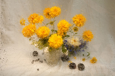 wet still life of yellow flowers through wet glass photo