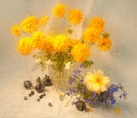 still life of yellow flowers through wet glass on a rain photo