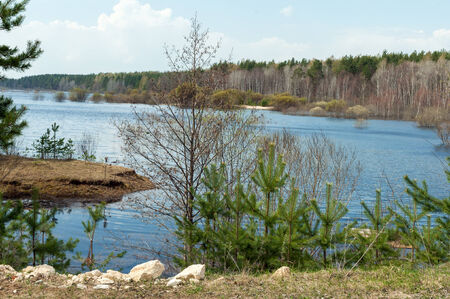 bight: landscape of the river bight in the forest