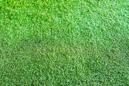 artificially: Green plastic grass texture.